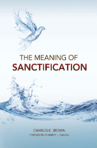 Sanctification_book_cover_FORWEB