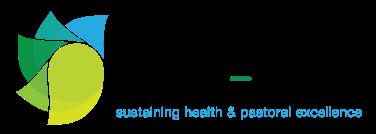 Shape_Logo
