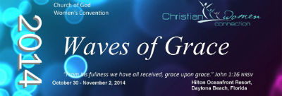 WavesOfGraceconvention2014_FORWEB