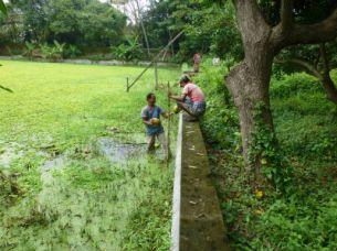 shelter_holdingpond_fishingoutcoconuts2016